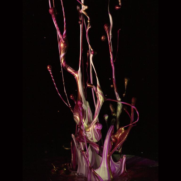 サウンドオブいけばな, 2013Sound of Ikebana, 2013